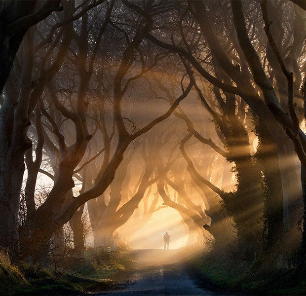 The Dark Hedges, Irlanda do Norte