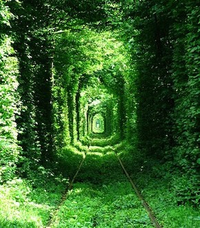 tunel-amor
