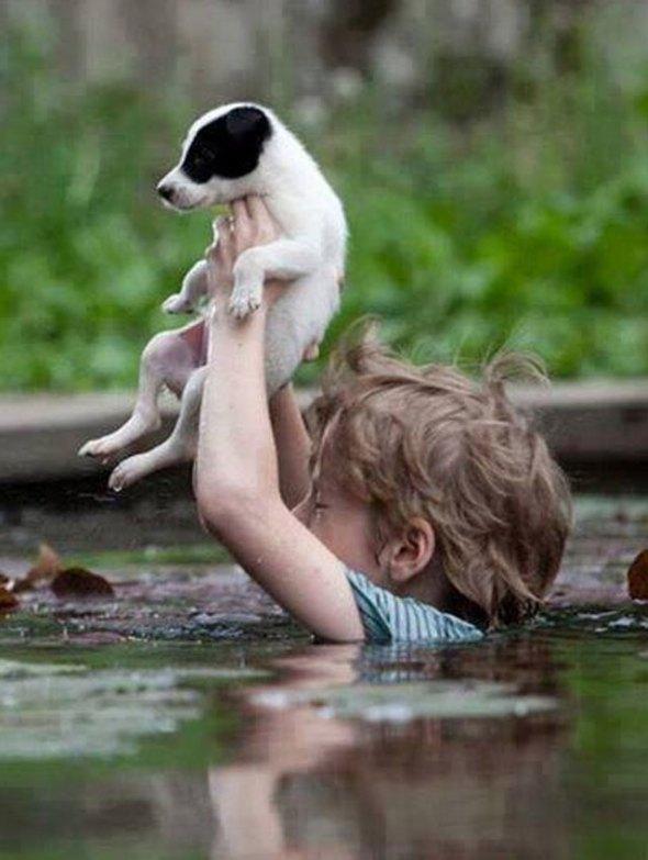 20140522nino-salva-perro-inundaciones-serbia