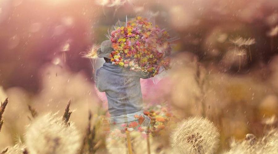 capa flores