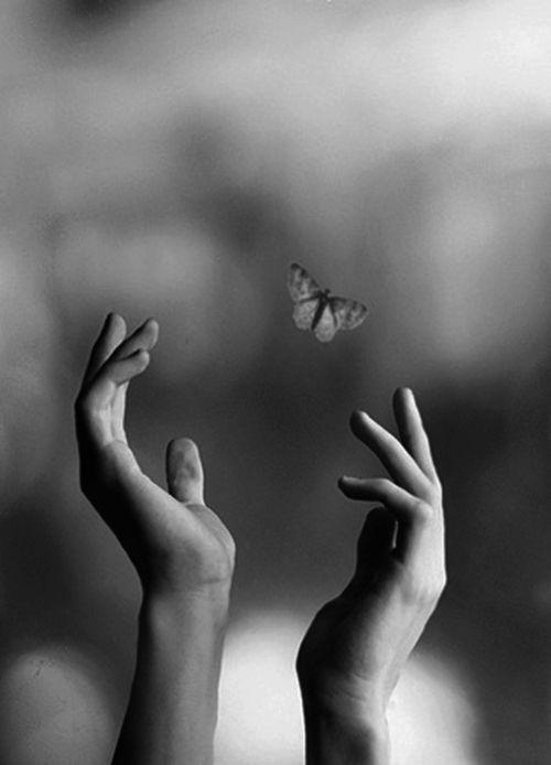 mãos com borboleta