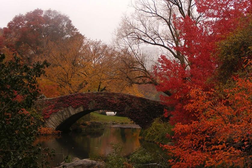 outono-2--838x558