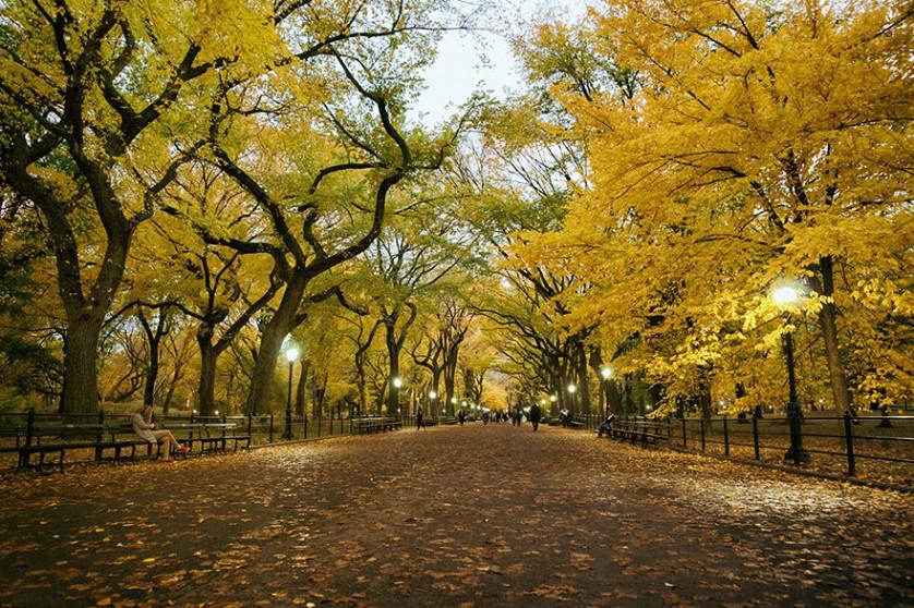 outono-6--838x558