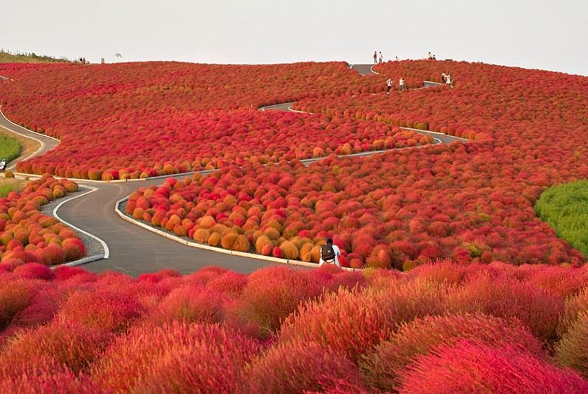 outono-7--838x562