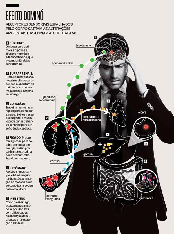 Como problemas emocionais se transformam em doenças?