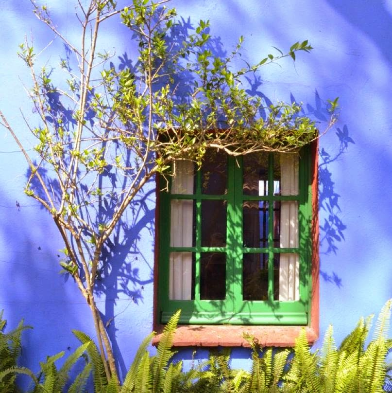 casa de frida khalo