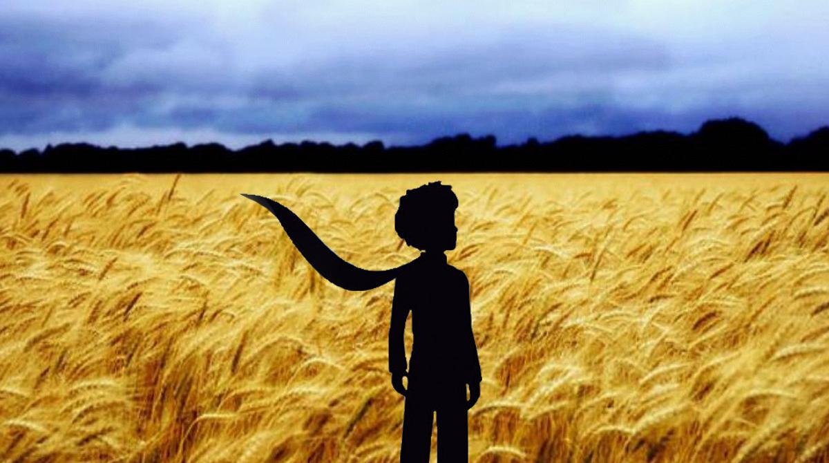 Filme O Pequeno Principe 2015 pertaining to os dourados da vida: sobre a essência do pequeno príncipe que