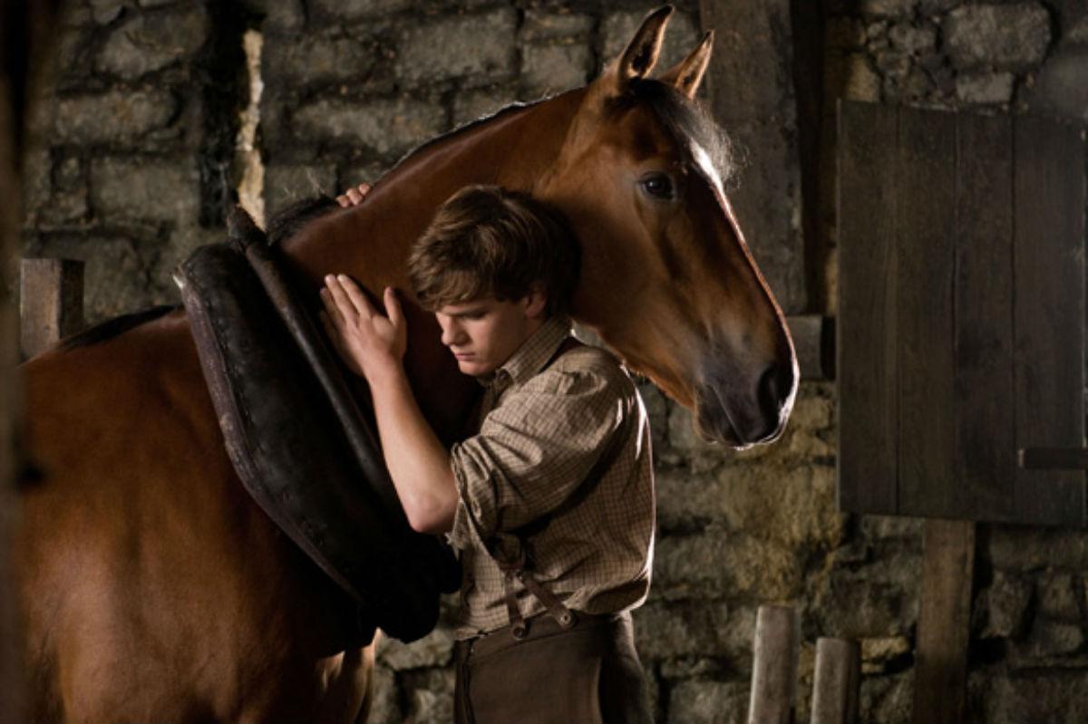 war horse albert and joey relationship