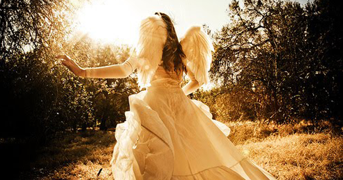 anjo capa