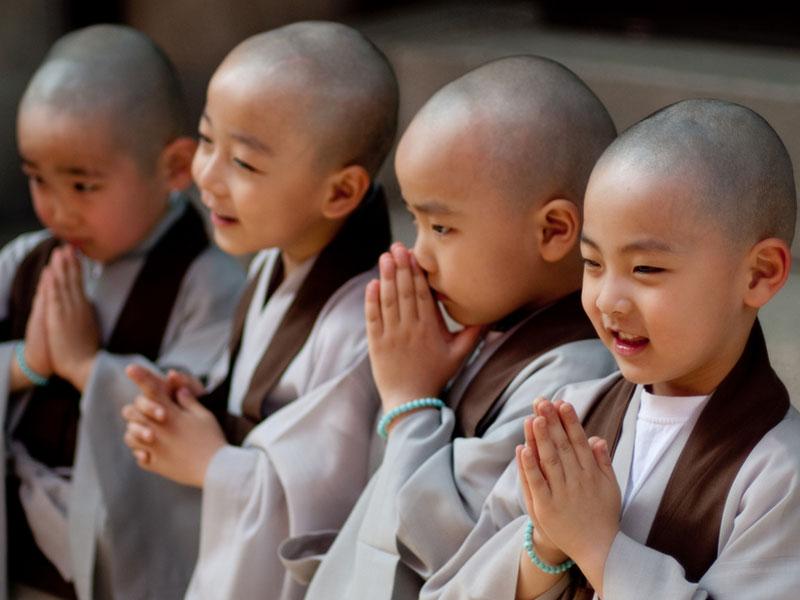 10-frases-budista-2