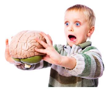 child-brain