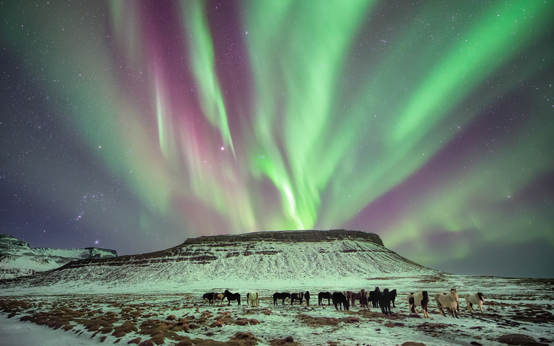 aurora boreal_16