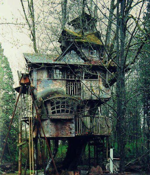 casas na árvore_10