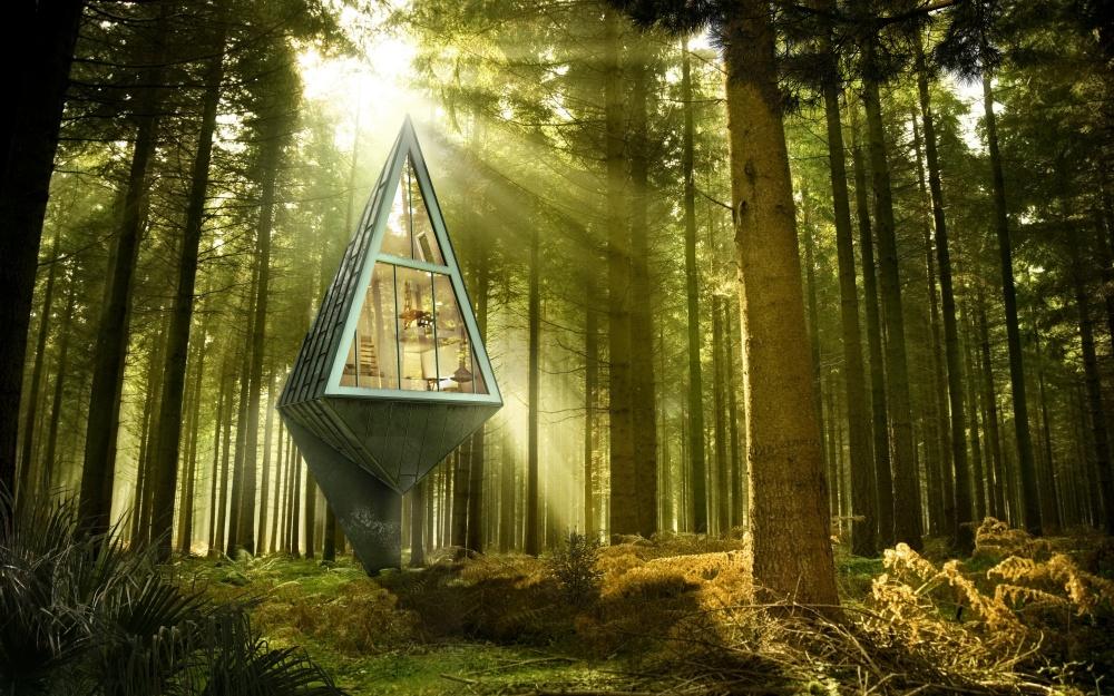 casas na árvore_12