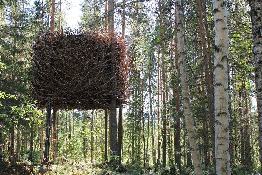 casas na árvore_3