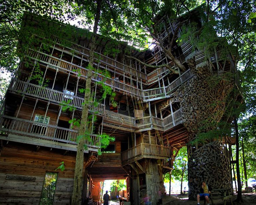 casas na árvore_4