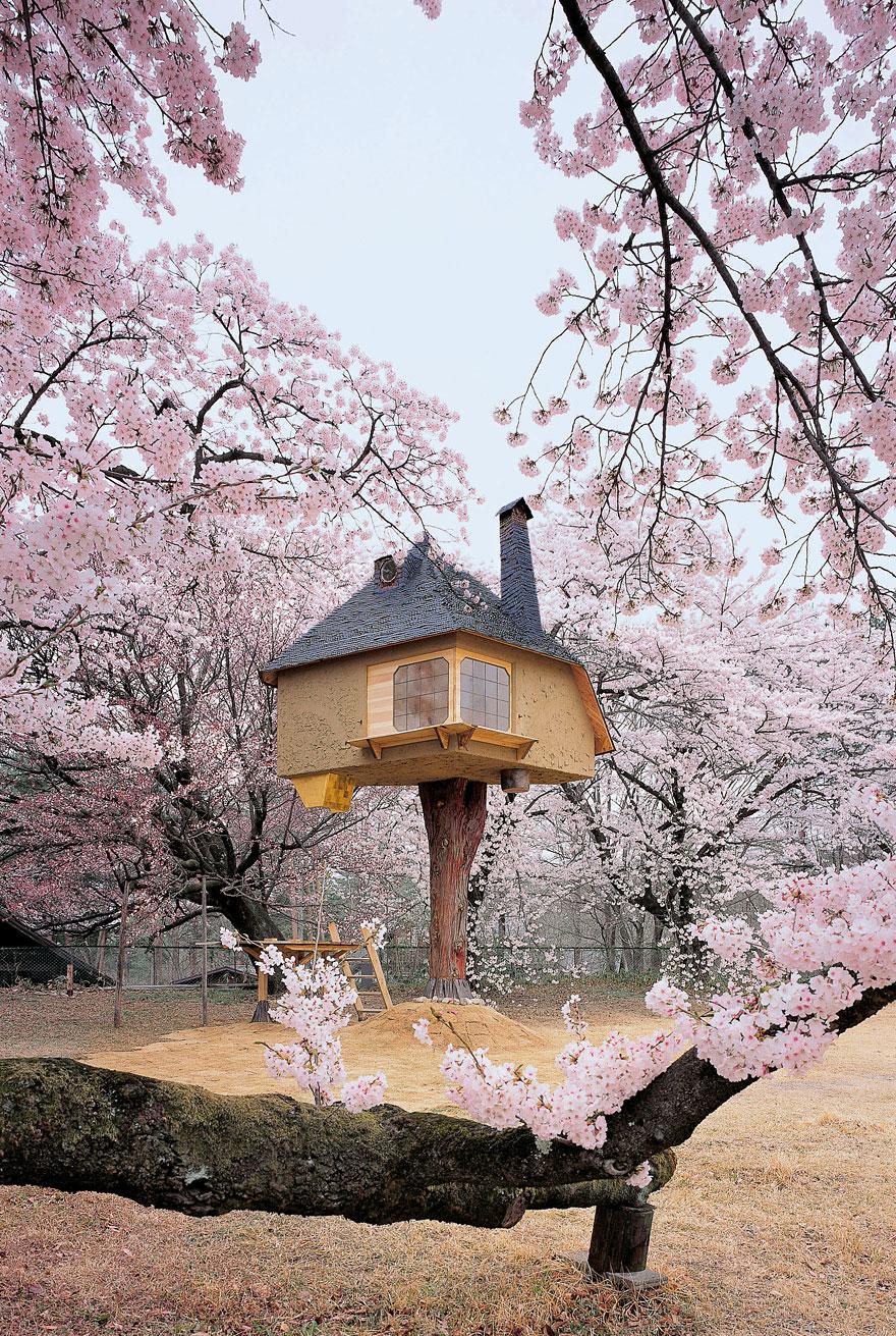 casas na árvore_6