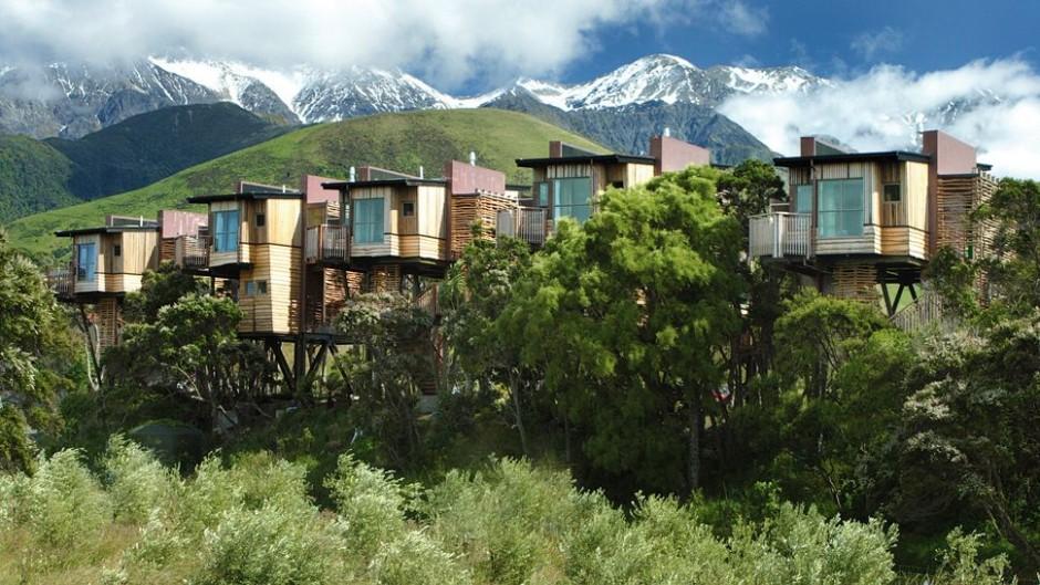 casas na árvore_8