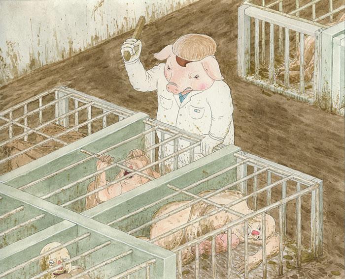 direitos animais_11