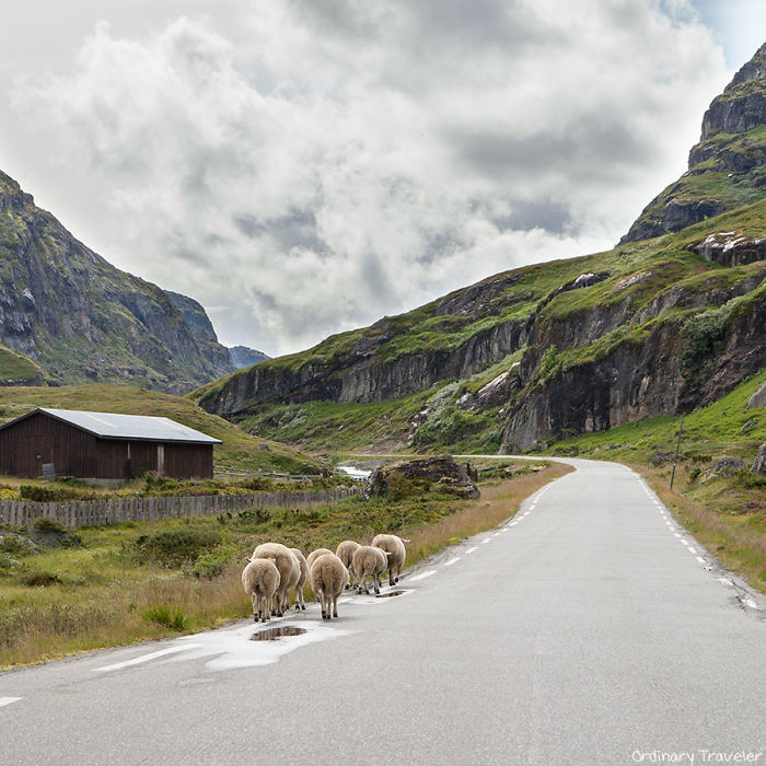 Norway-CW-2-57a3edbc2ec76__700