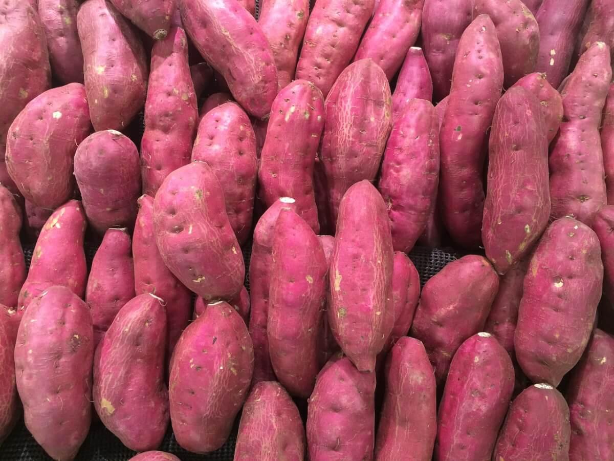 A batata-doce é a chave para o fim da gastrite, refluxo, azia, e até mesmo úlceras!