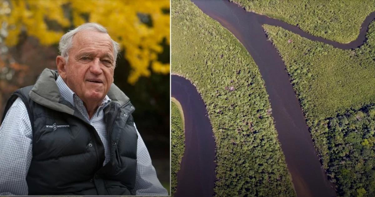 Resultado de imagem para Bilionário cria fundo para a conservação de 30% do planeta até 2030